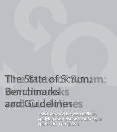 Rapport: The State of Scrum - Benchmarks and Guidelines