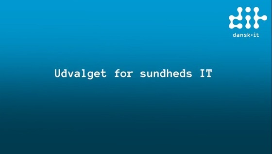 Udvalget for sundheds IT, Dansk IT
